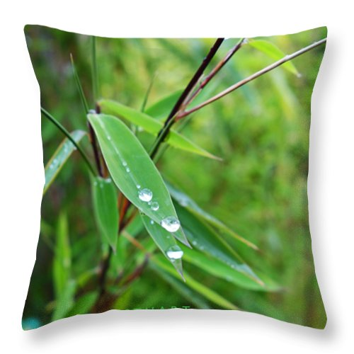Shades Of Green Throw Pillow featuring the painting Forty Shades Of Green by Charles Stuart
