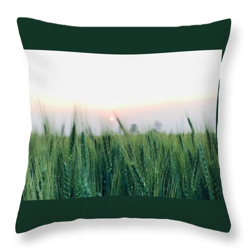 Lanscape Throw Pillow featuring the photograph Greenery by Prashant Dalal