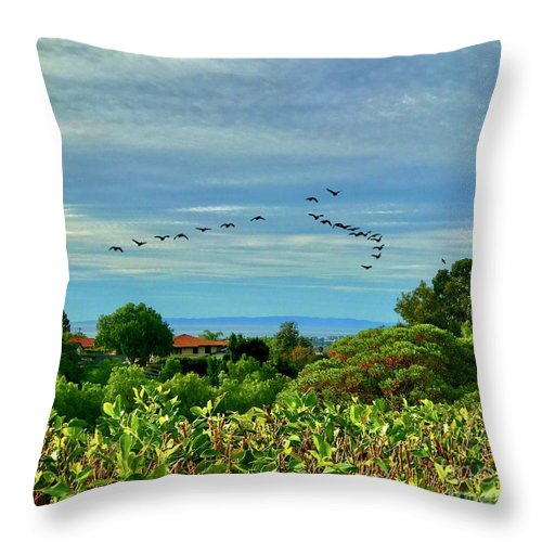 Nature Throw Pillow featuring the photograph Incoming by Debbi Granruth