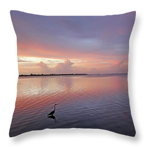 Sunset Throw Pillow featuring the photograph Last Light by HH Photography of Florida