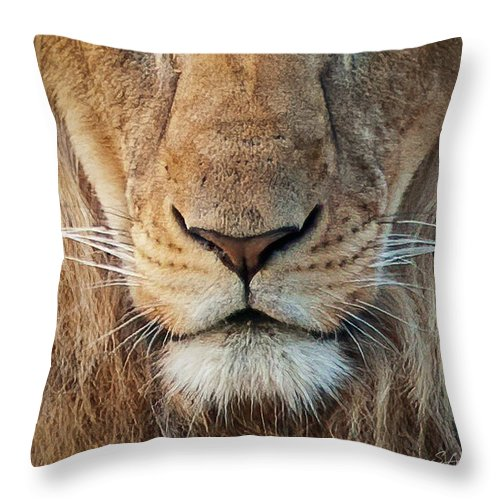 Lion Throw Pillow featuring the photograph Lion by Steven Sparks
