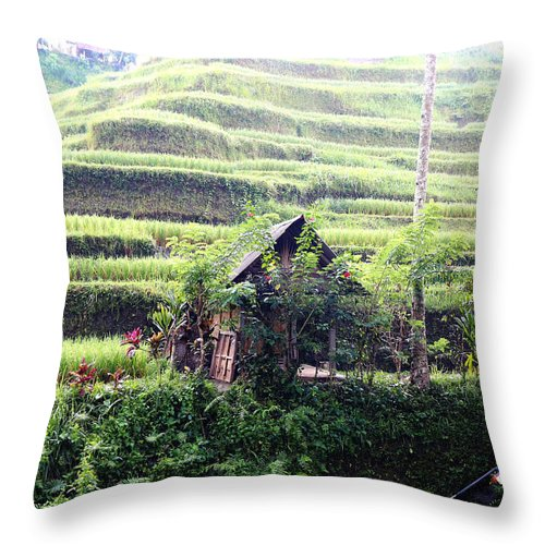 Hut Throw Pillow featuring the digital art Little hut surrounded by flowers by Worldvibes1