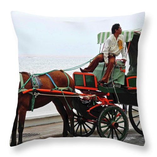 Horse Throw Pillow featuring the photograph Lovely Transportation in Cozumel by Kirsten Giving