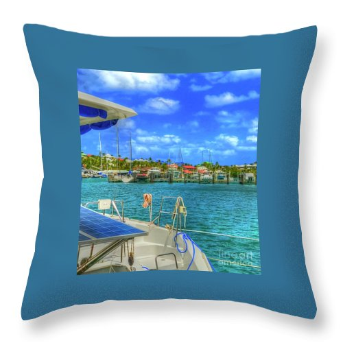Water Throw Pillow featuring the photograph Loving Life by Debbi Granruth