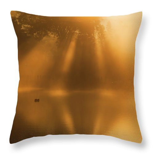 Morning Throw Pillow featuring the photograph Morning Fog Sunbeams by Trevor Slauenwhite