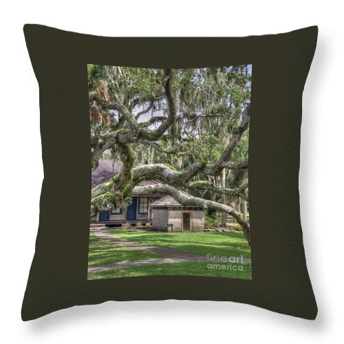 Moss Throw Pillow featuring the photograph Mossy Oak by Debbi Granruth