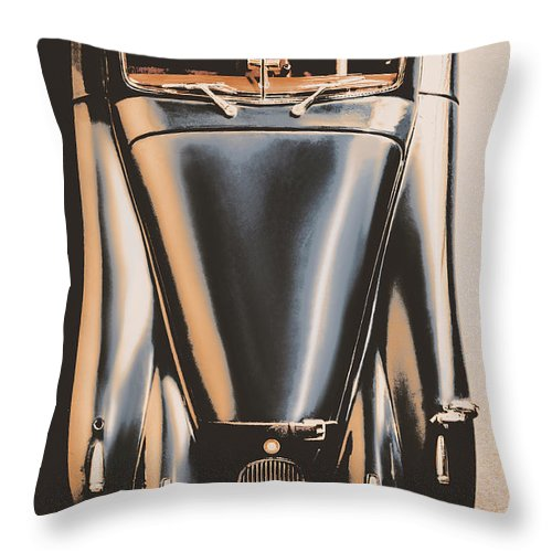 Jaguar Throw Pillow featuring the photograph On Top by Jorgo Photography - Wall Art Gallery