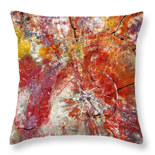 Petrified Wood Stone Texture Abstract Color Skip Hunt Throw Pillow featuring the photograph Painted Desert Wood 1 by Skip Hunt