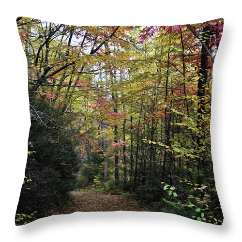 Scenic Throw Pillow featuring the photograph Painted Fall In North Carolina by Skip Willits