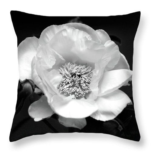 Black And White Flower Photography Throw Pillow featuring the photograph Peony by Trevor Slauenwhite