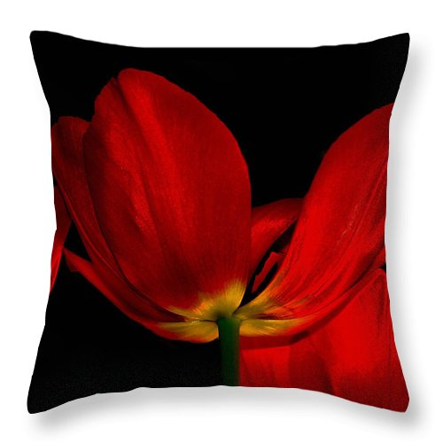 Flowers Throw Pillow featuring the photograph Red Silk by Linda Sannuti