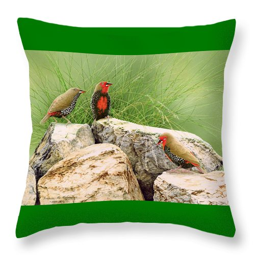Bird Throw Pillow featuring the painting Rock Stars - Painted Finches by Frances McMahon