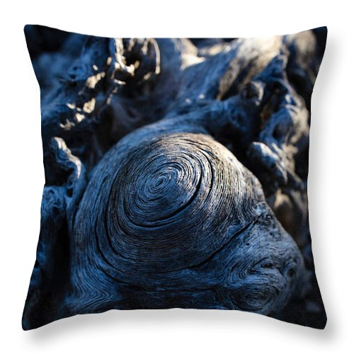 Saguaro Throw Pillow featuring the photograph Saguaro Vortex by Kati Astraeir