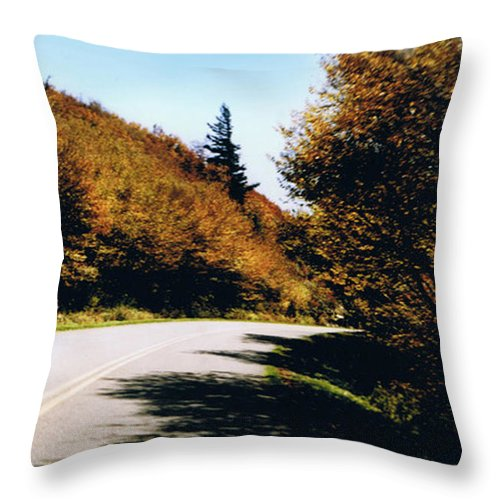 High In The Great Smoky Mtn. As You Round A Curve Stands This Noble Spruce. Throw Pillow featuring the photograph Single Spruce by Seth Weaver