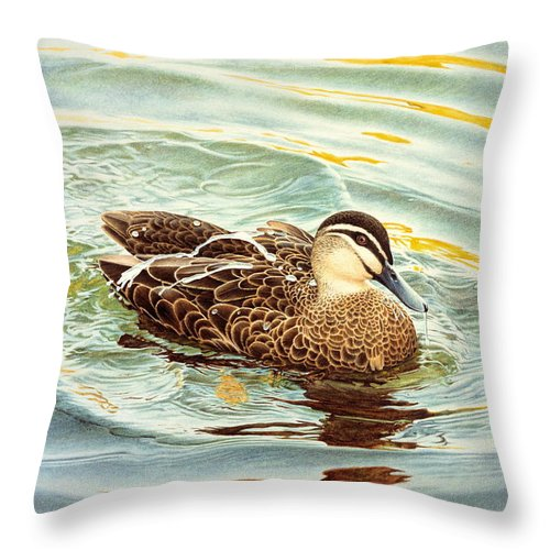 Watercolour Birds Throw Pillow featuring the painting Splash - Pacific Black Duck by Frances McMahon