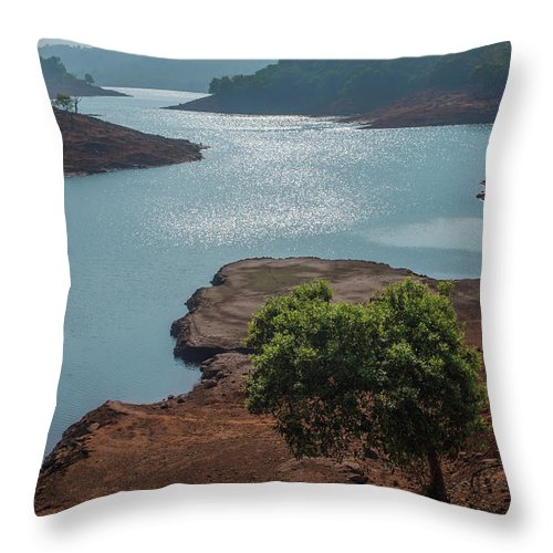 Prime Throw Pillow featuring the photograph Ssk 7297 Prime Location. Color by Sunil Kapadia