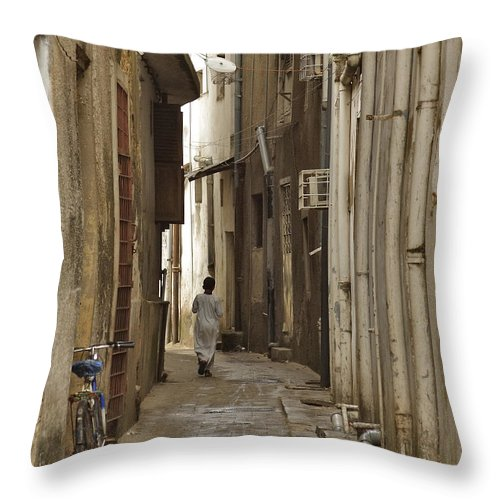 3scape Throw Pillow featuring the photograph Stone Town by Adam Romanowicz