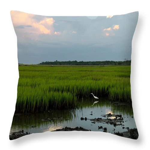 Egret Throw Pillow featuring the photograph Summertime Marsh by Suzanne Gaff