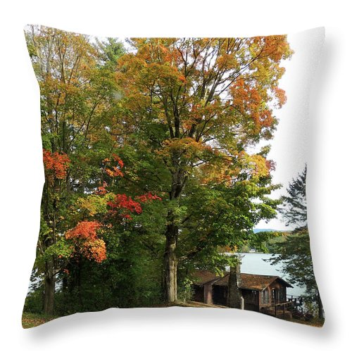 Autumn Throw Pillow featuring the photograph The Patchwork Tree in Autumn by Nancy Griswold
