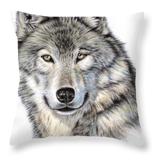 Wolf Throw Pillow featuring the drawing The Wolf by Nicole Zeug