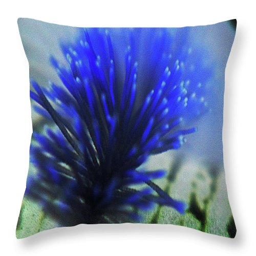 Abstract Throw Pillow featuring the photograph Underwater Blue by Holly Morris