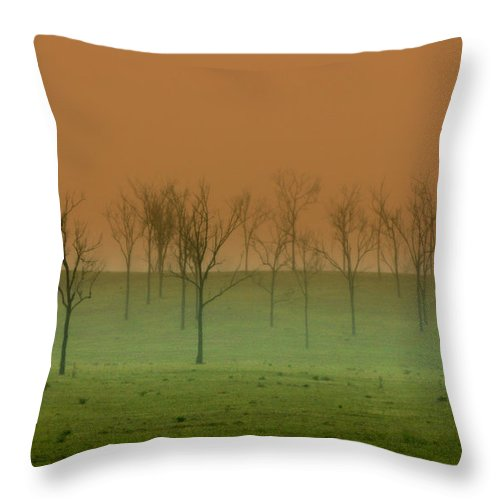 Landscape Throw Pillow featuring the photograph Veil of Mystery by Holly Kempe