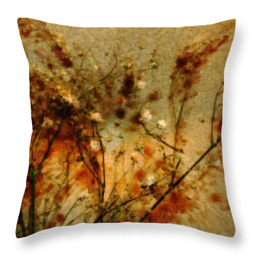 Vintage Art Throw Pillow featuring the photograph Vintage by Linda Sannuti