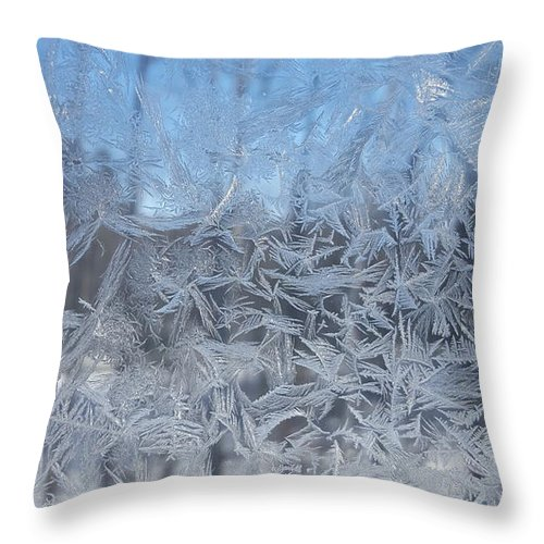 Winter Throw Pillow featuring the photograph Winter Frost by Trevor Slauenwhite