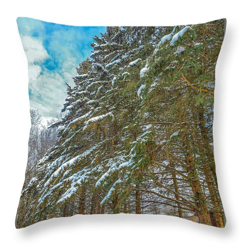 Nature Throw Pillow featuring the photograph Winter Trees by M Forsell