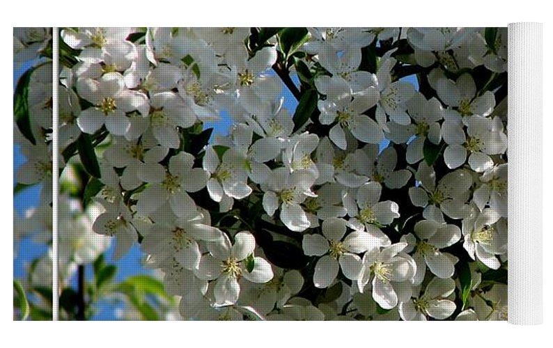 White Flowering Crabapple Tree Yoga Mat For Sale By Rose Santuci