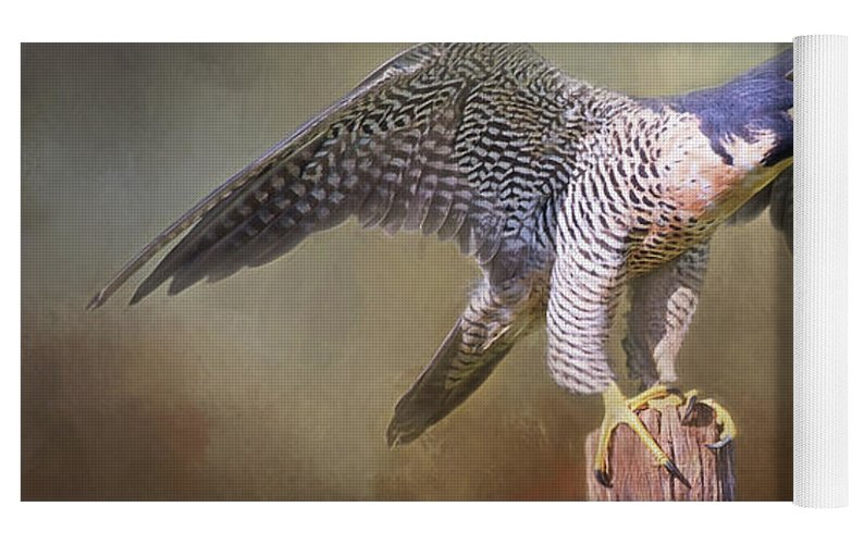 Peregrine Falcon Taking Flight Yoga Mat For Sale By Sharon Mcconnell