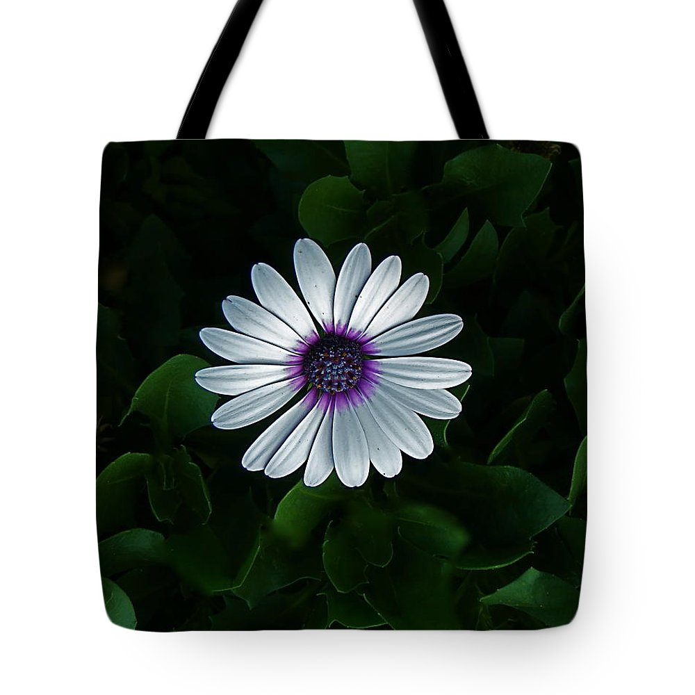 Flower Tote Bag featuring the photograph One Single Flower by Rita Mueller