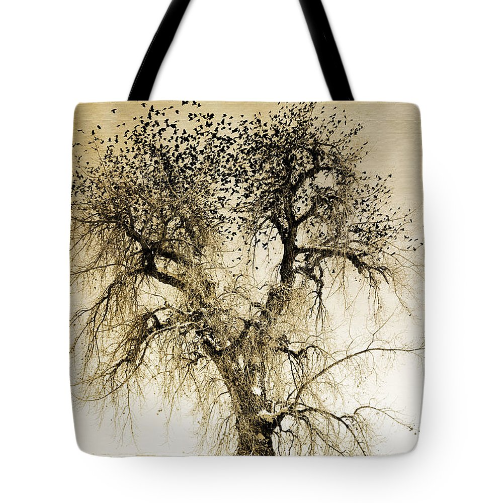 Birds Tote Bag featuring the photograph Bird Tree Fine Art Mono Tone And Textured by James BO Insogna