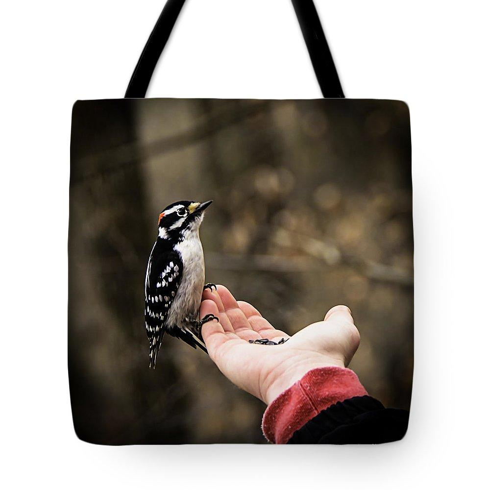 Usa Tote Bag featuring the photograph Downy Woodpecker In Hand by LeeAnn McLaneGoetz McLaneGoetzStudioLLCcom
