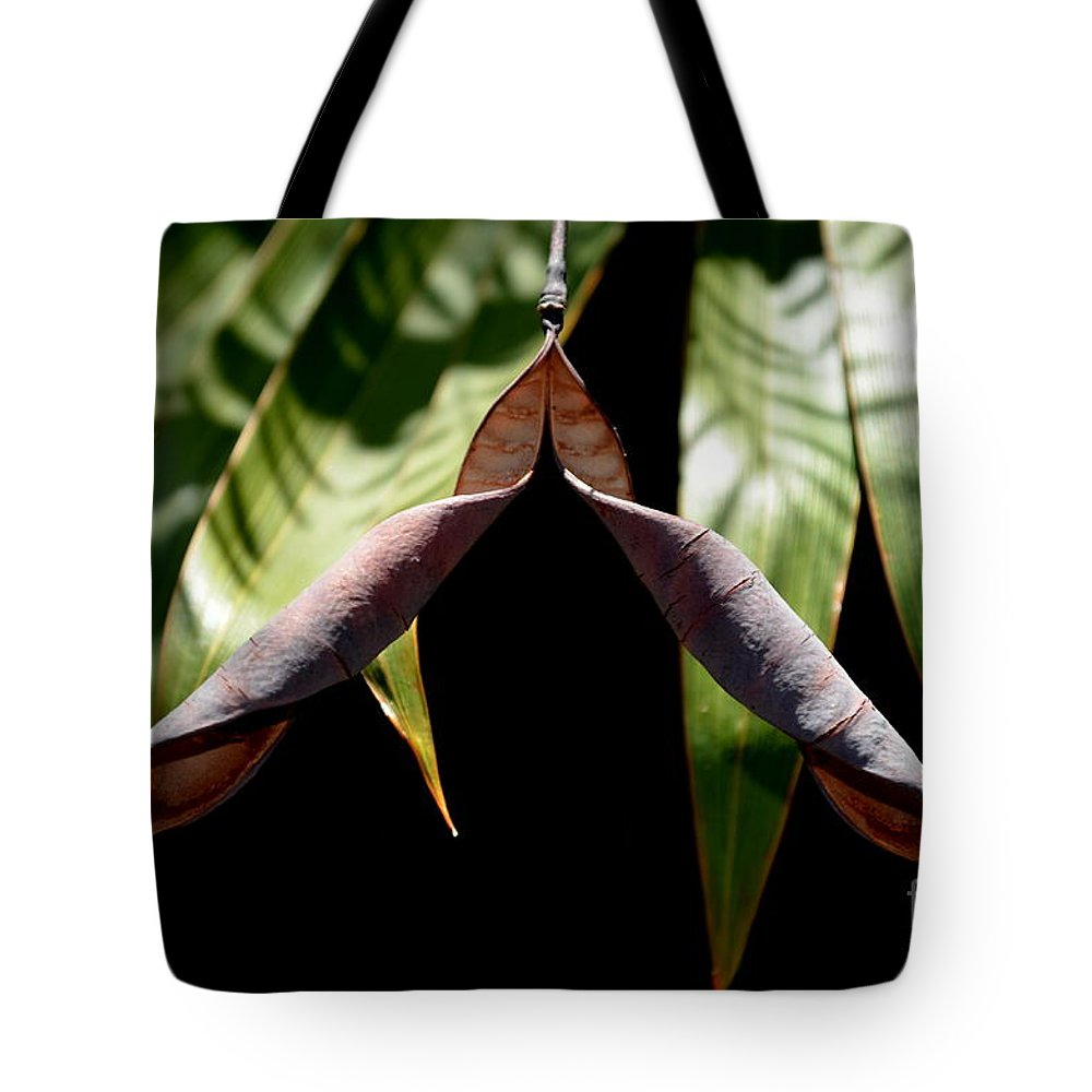 Michelle Meenawong Tote Bag featuring the photograph Husk by Michelle Meenawong