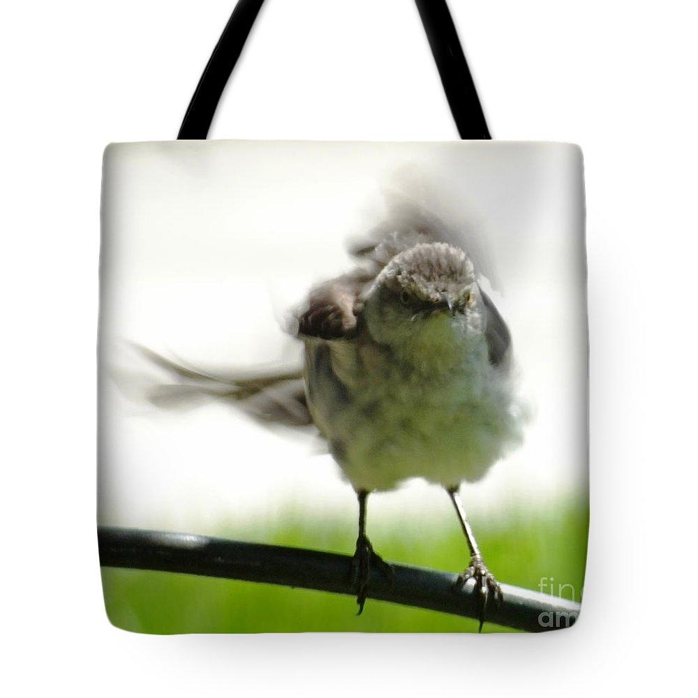 Mockingbird Tote Bag featuring the digital art Mockingbird Dance by Lizi Beard-Ward