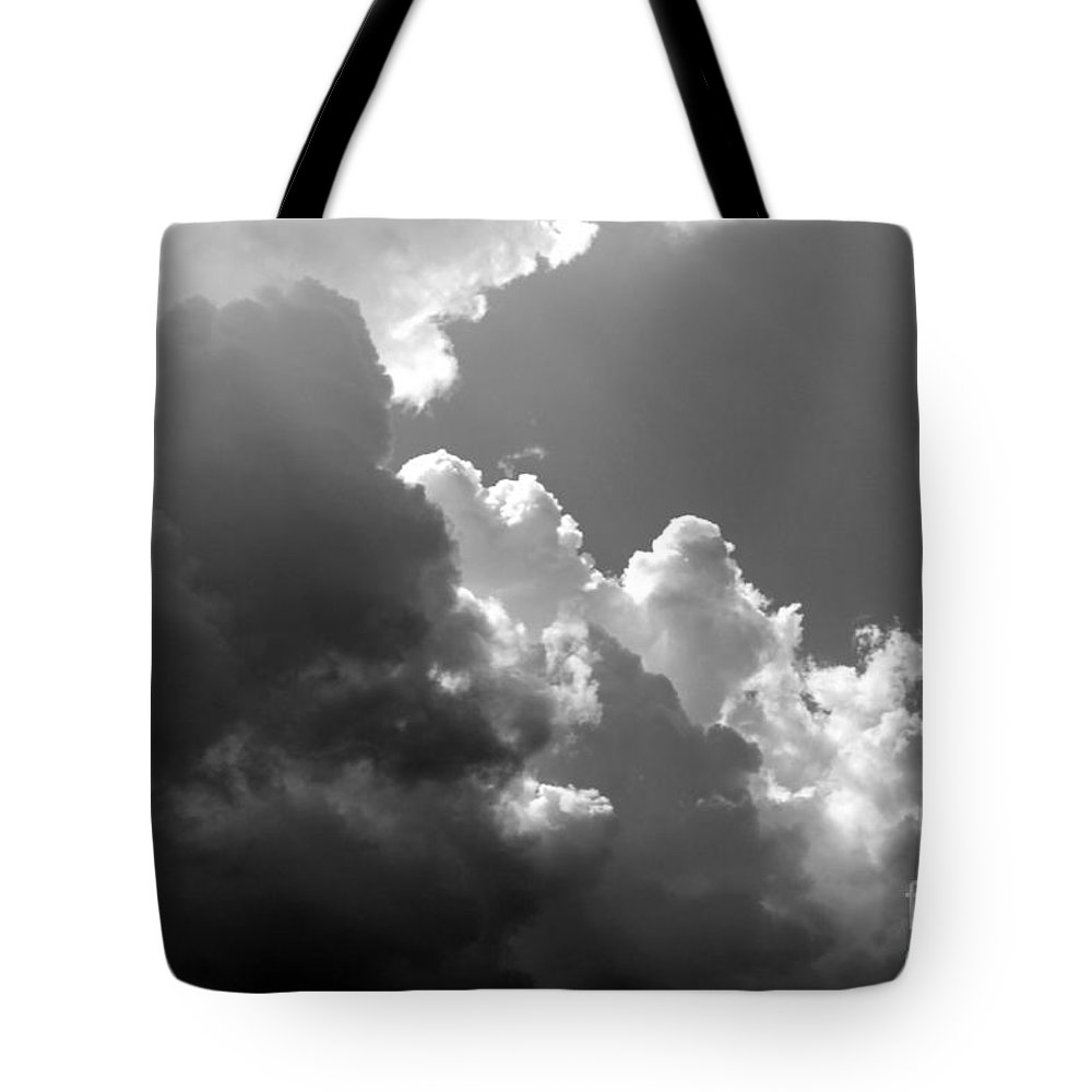 Seascape Tote Bag featuring the photograph Seagulls In Flight Mb058bw by Earl Johnson