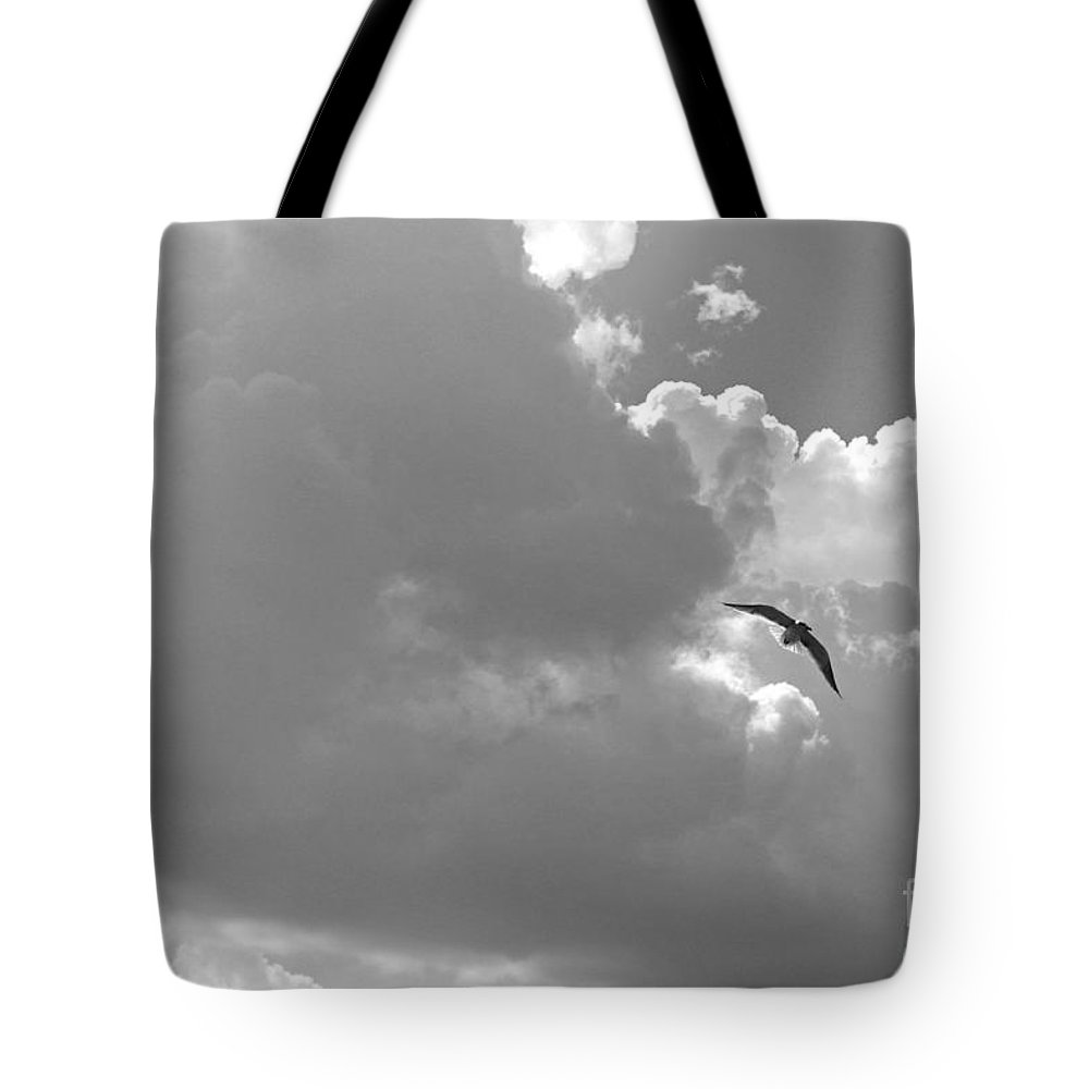 Seascapes Tote Bag featuring the photograph Seagulls Mb043bw by Earl Johnson