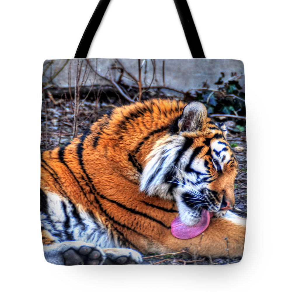 Animals Tote Bag featuring the photograph 0014 Siberian Tiger by Michael Frank Jr