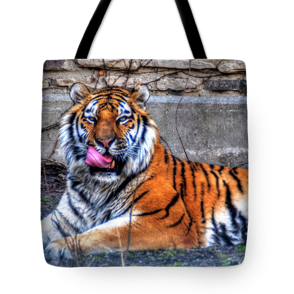 Animals Tote Bag featuring the photograph 005 Siberian Tiger by Michael Frank Jr