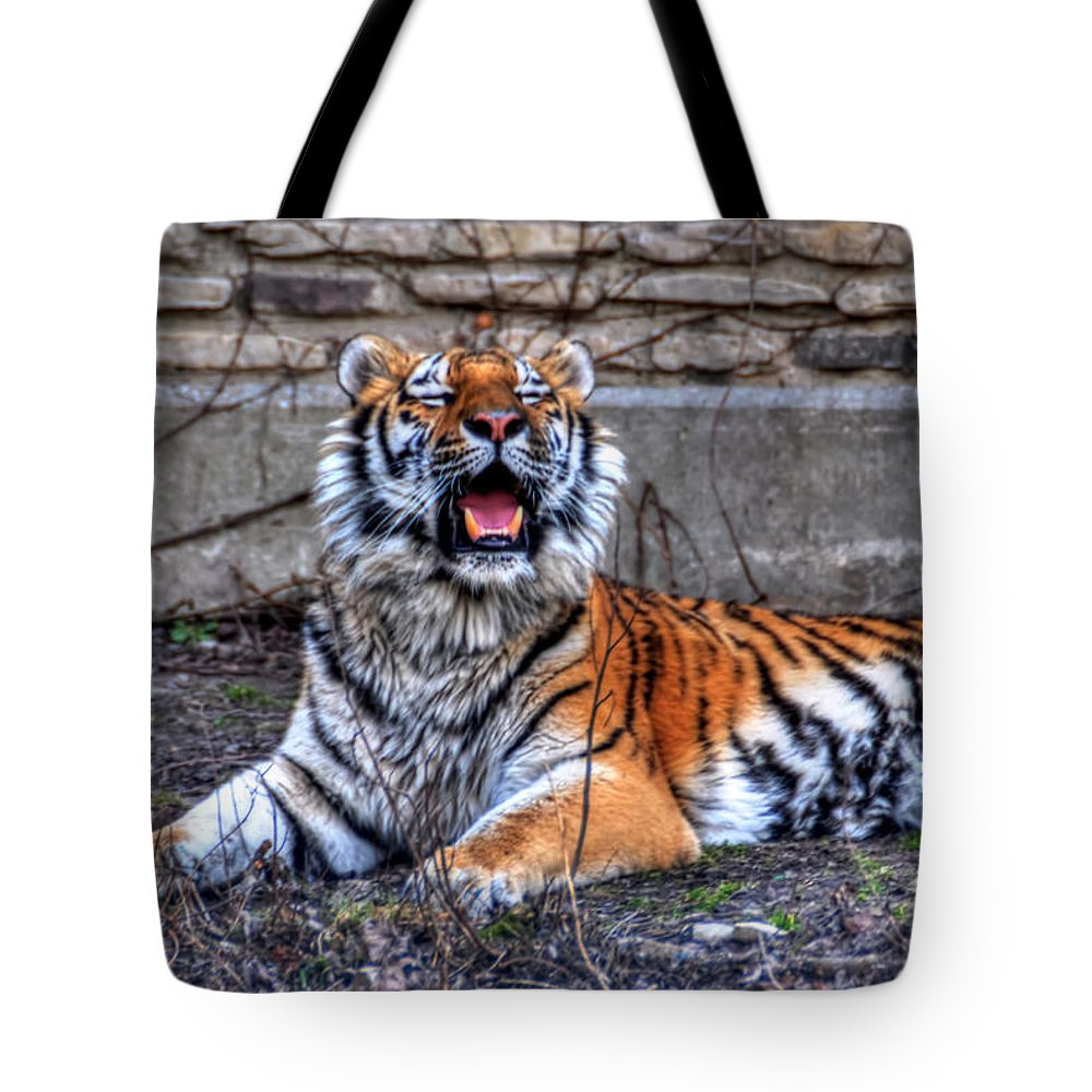 Animals Tote Bag featuring the photograph 007 Siberian Tiger by Michael Frank Jr