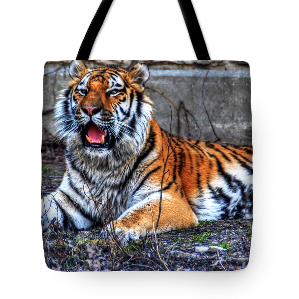 Animals Tote Bag featuring the photograph 008 Siberian Tiger by Michael Frank Jr
