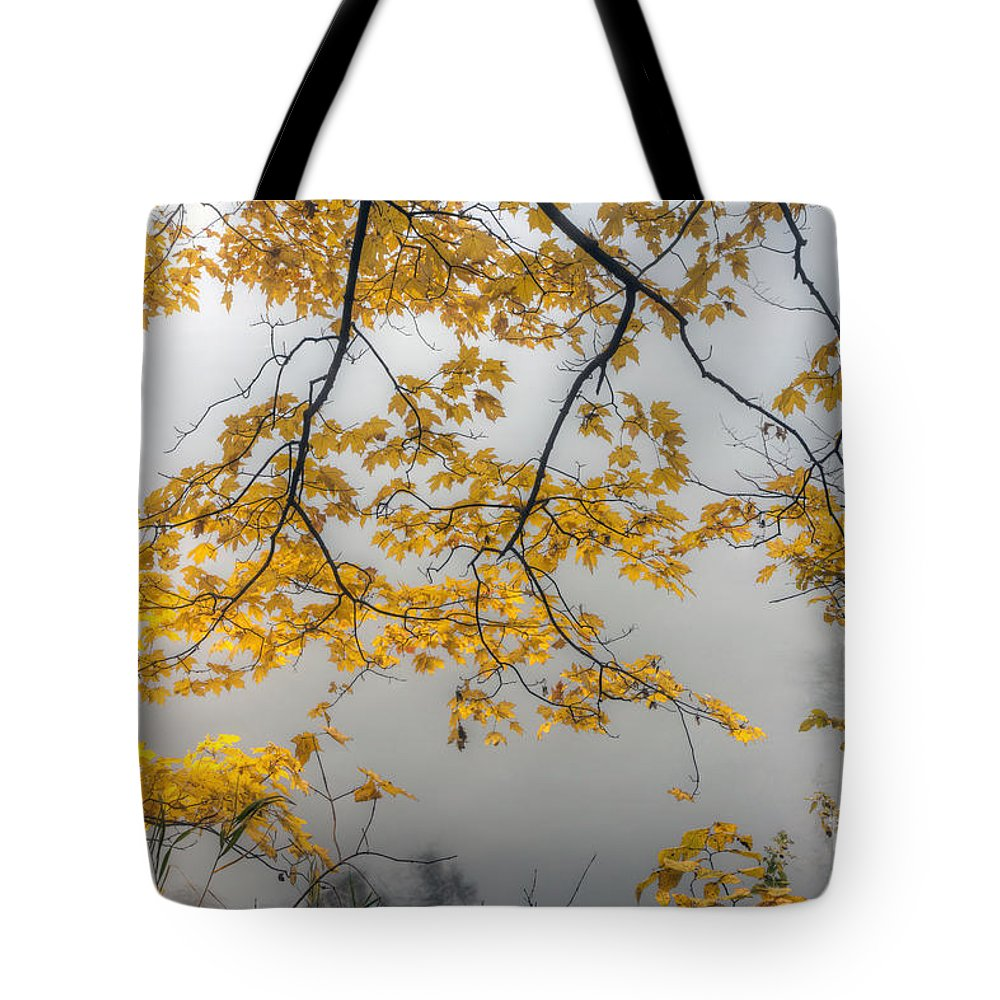Starved Tote Bag featuring the photograph 0135 Autumn Gold by Steve Sturgill