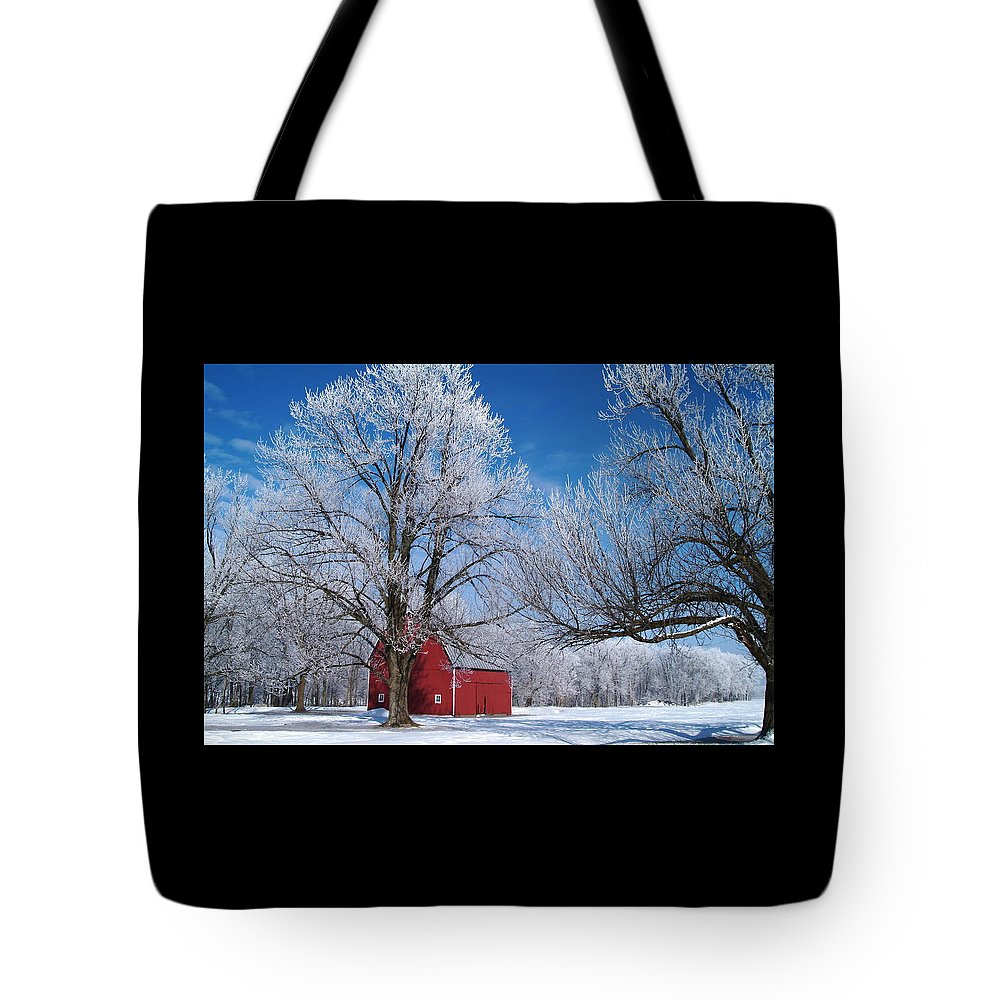 Winter Tote Bag featuring the photograph 020810-76 by Mike Davis
