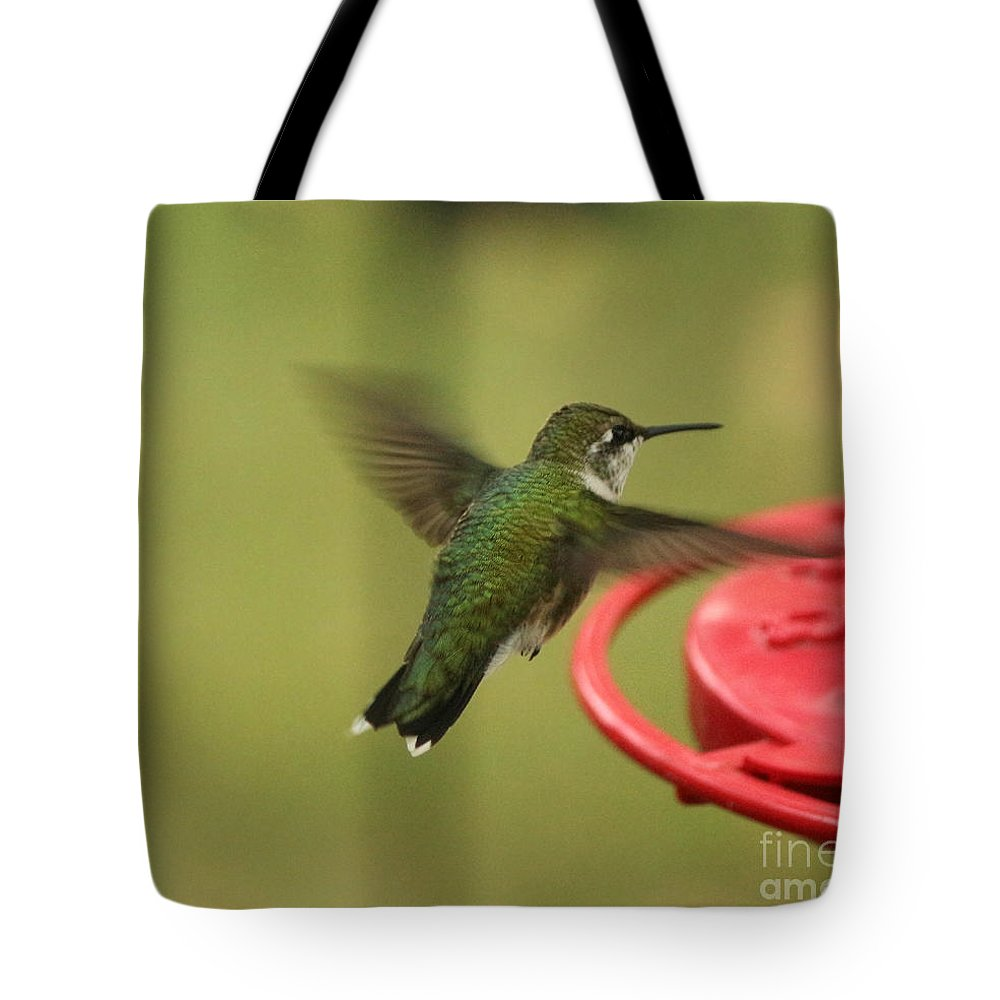 Ruby-throated Hummingbird Tote Bag featuring the photograph Ruby-throated Hummingbird by Lori Tordsen