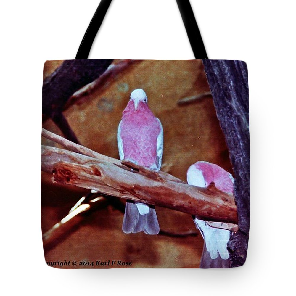 Birds Tote Bag featuring the photograph 2 Birds by Karl Rose