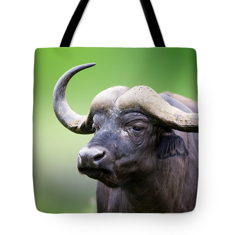 Buffalo Tote Bag featuring the photograph African Buffalo Portrait by Johan Swanepoel