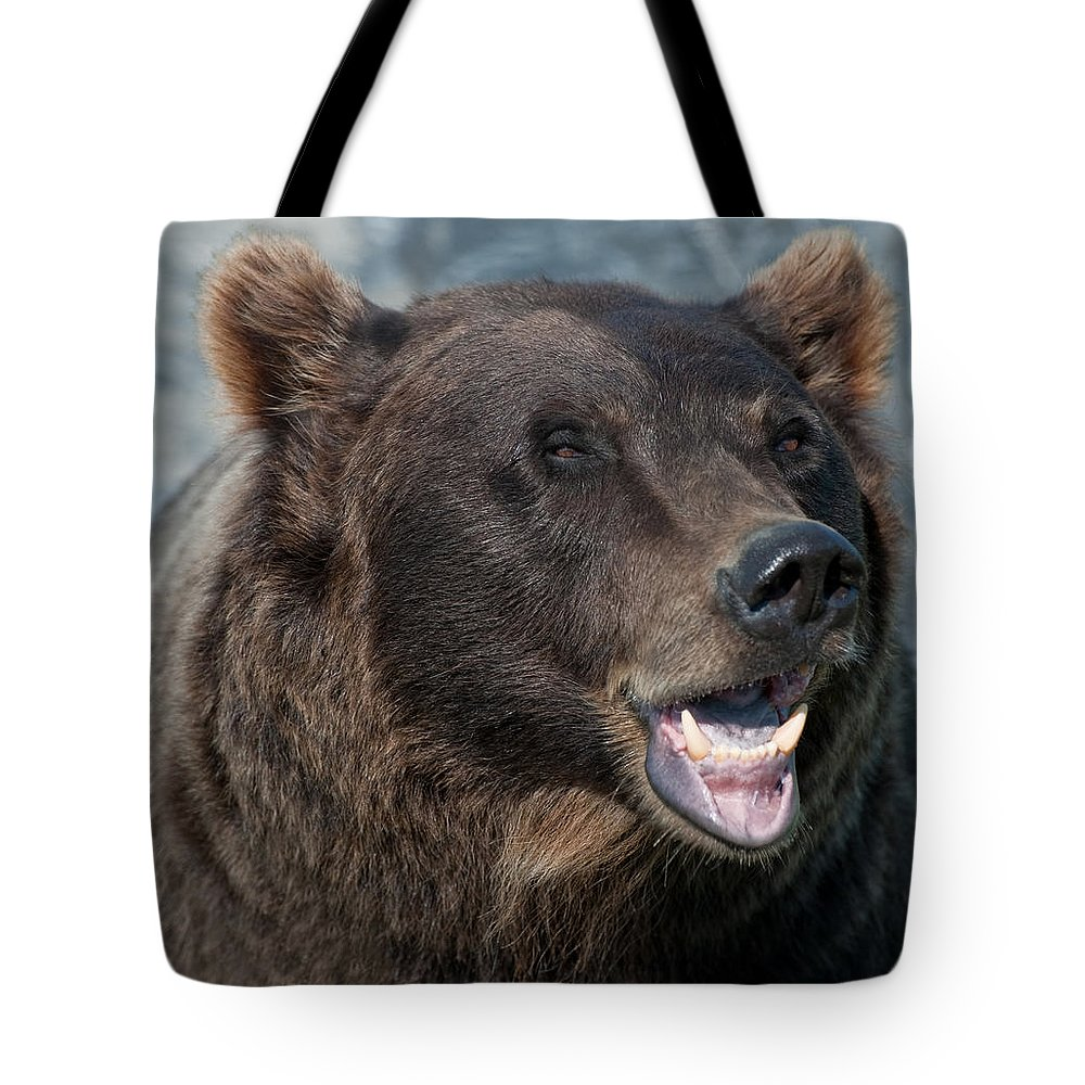 Alaska Tote Bag featuring the photograph Alaskan Brown Bear by Clint Pickarsky