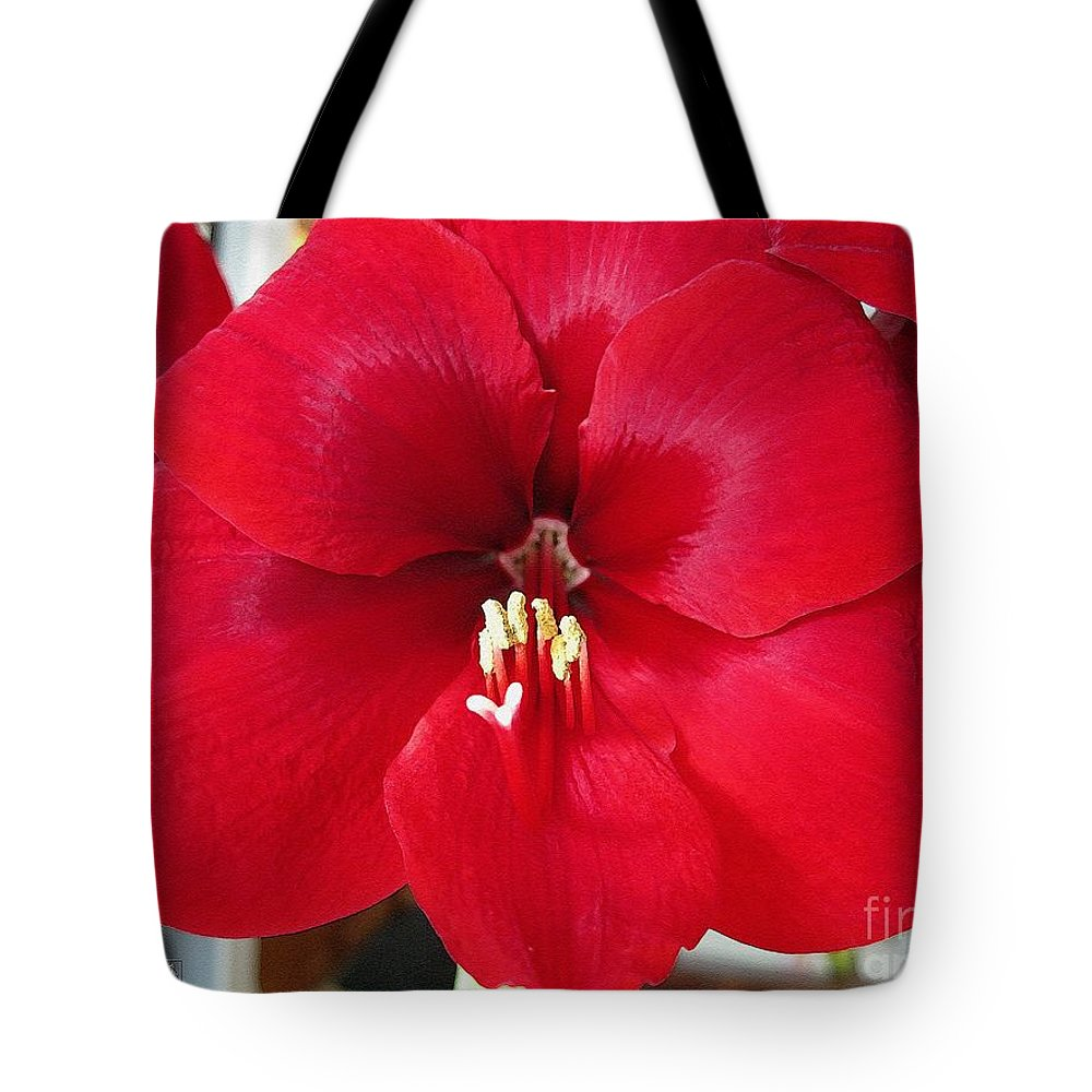 Mccombie Tote Bag featuring the painting Amaryllis Named Black Pearl by J McCombie