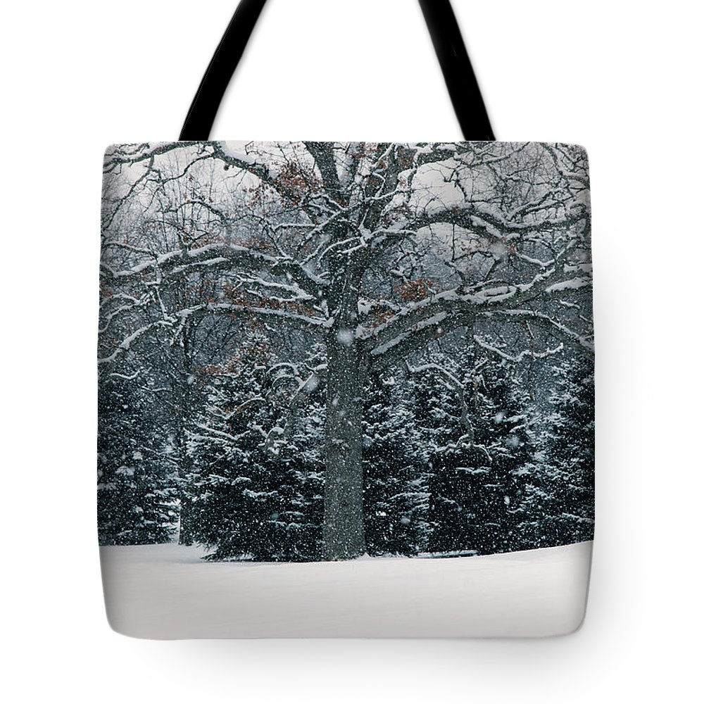As The Snow Flies Tote Bag featuring the photograph As The Snow Flies by Rachel Cohen